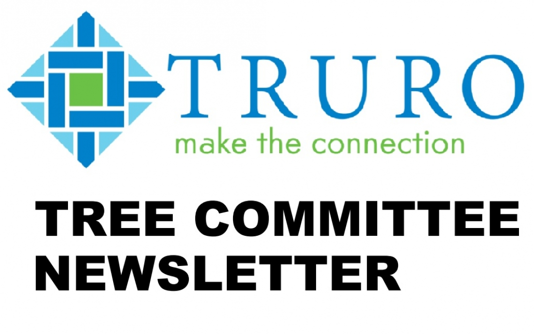 Tree Committee Newsletter - March 2017
